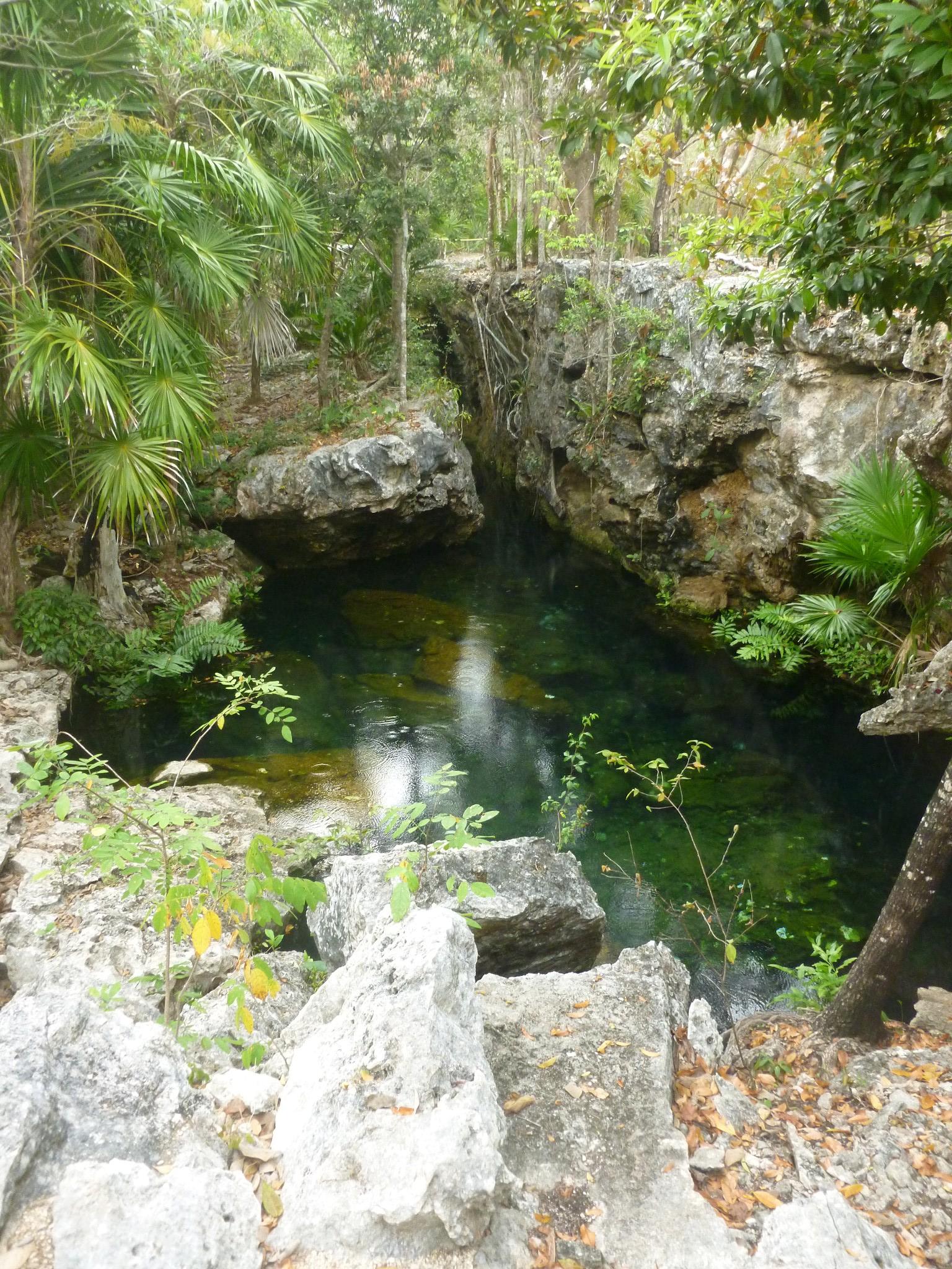 Cenote Eden Playa del Carmen