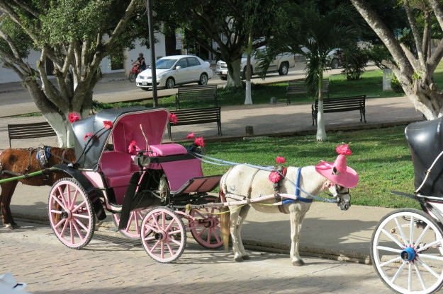 Izamal Carriage