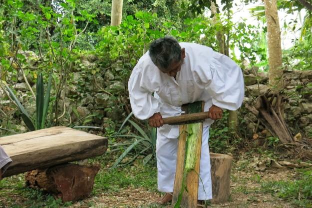 Making sisal