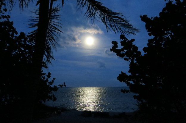 Xcalak Moon