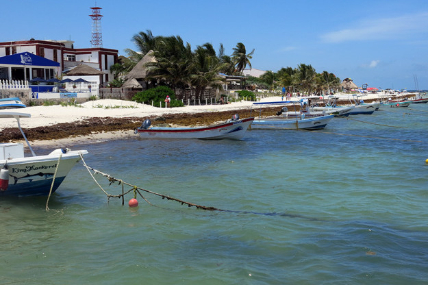 Fishing is the primary activity here in Puerto Morelos.
