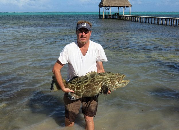 Grouper in Xcalak