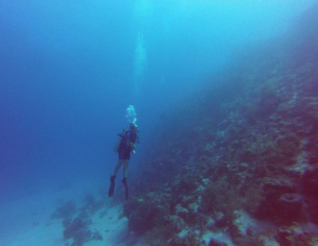 Diving Banco Chinchorro