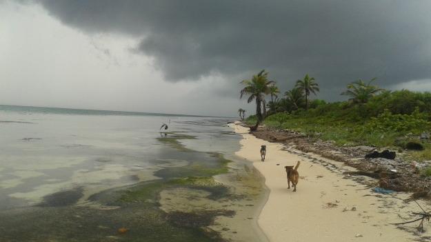 Xcalak Storms