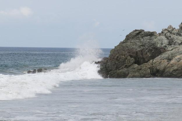 San Pancho Wave