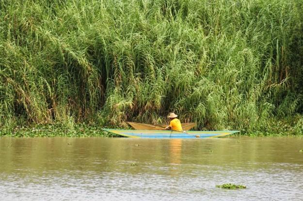Lake Patzcuaro Fisherman