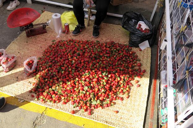 Strawberries for sale in Patzcuaro
