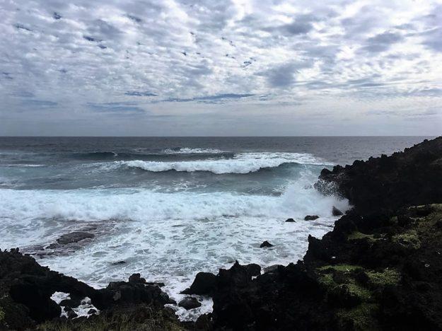 Pacific Ocean is Mean
